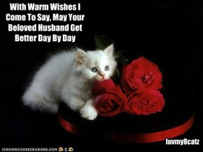 To NawtyKitty From luvmy8catz