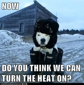 NOW  DO YOU THINK WE CAN TURN THE HEAT ON?
