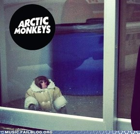 Ikea Monkey Never Gets Old in My Book