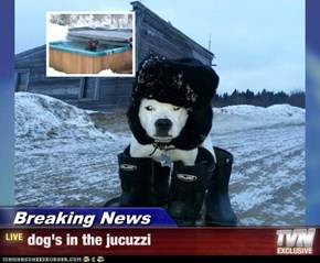 Breaking News - dog's in the jucuzzi