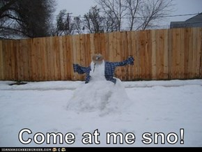 Come at me sno!