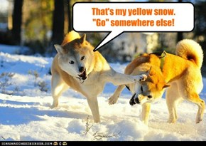 Beware the yellow snow