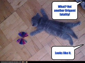 What? Not  another Origami fatality!