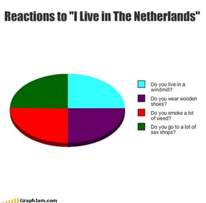 "Reactions to ""I Live in The Netherlands"""