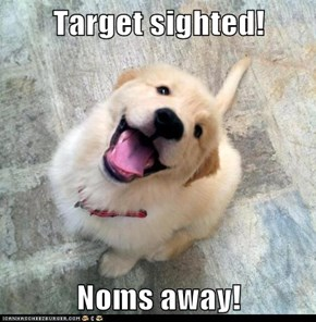 Target sighted!  Noms away!