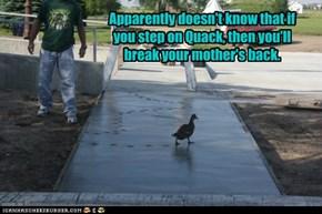 Quack, Quack, Quack