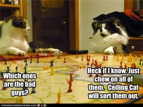 The Kitteh Crusades