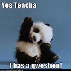 Yes Teacha   I has a qwestion!