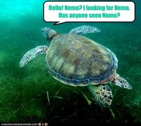 No mo' Nemo?