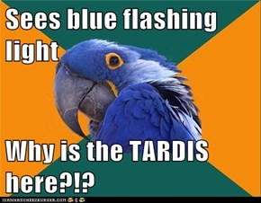 Sees blue flashing light  Why is the TARDIS here?!?
