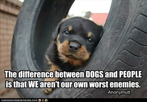 Out of the Mouths of Pups