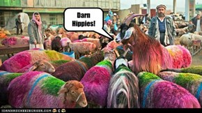 Darn Hippies!