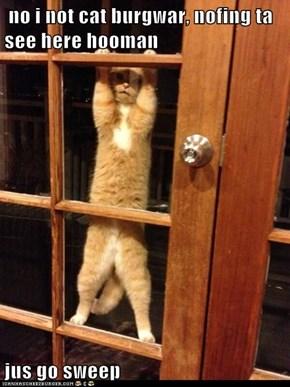 no i not cat burgwar, nofing ta see here hooman  jus go sweep
