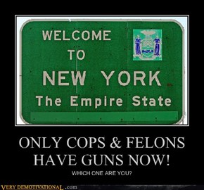 ONLY COPS & FELONS HAVE GUNS NOW!
