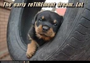 The  early  reTIREment  dream.. LoL