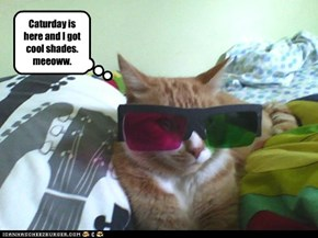 Caturday is here and I got cool shades.  meeoww.