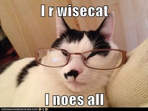 I r wisecat  I noes all