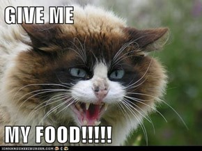 GIVE ME   MY FOOD!!!!!