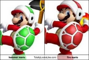 hammer mario Totally Looks Like fire mario