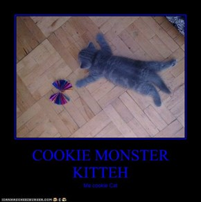 COOKIE MONSTER KITTEH