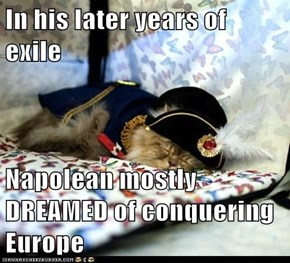 In his later years of exile  Napolean mostly DREAMED of conquering Europe