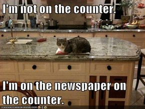 I'm not on the counter.  I'm on the newspaper on the counter.