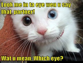 Look me in ta eye wen u say that, partner!  Wat u mean, Which eye?
