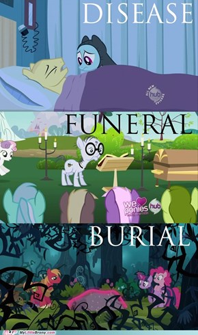 All ponies go to heaven