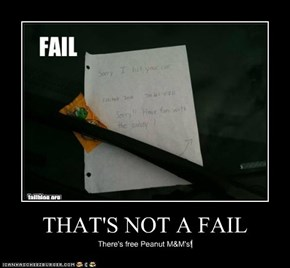 THAT'S NOT A FAIL