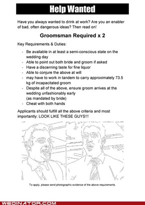 Help Wanted: Groomsman x 2