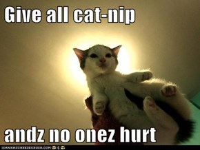 Give all cat-nip  andz no onez hurt