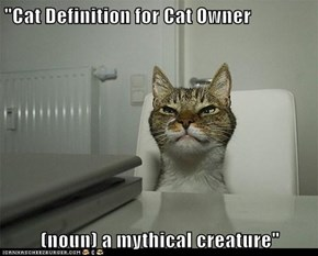 """Cat Definition for Cat Owner  (noun) a mythical creature"""