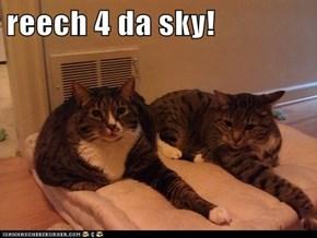 reech 4 da sky!