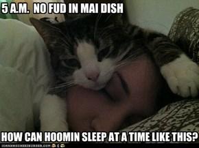 5 A.M.  NO FUD IN MAI DISH