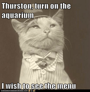 Thurston, turn on the aquarium  I wish to see the menu