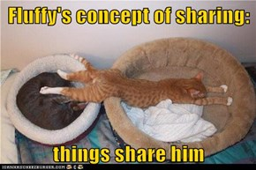 Fluffy's concept of sharing:  things share him