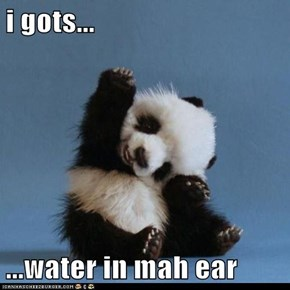 i gots...  ...water in mah ear