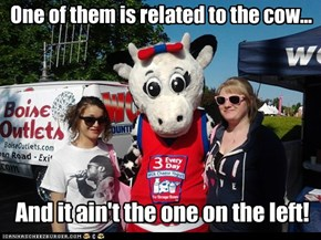 One of them is related to the cow...