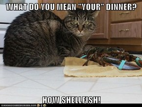 "WHAT DO YOU MEAN ""YOUR"" DINNER?  HOW SHELLFISH!"