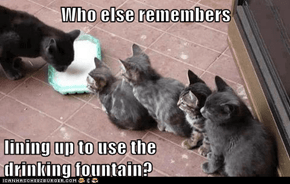 Who else remembers  lining up to use the                          drinking fountain?