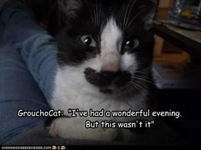 GrouchoCat