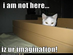i am not here...  iz ur imagination!