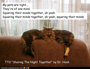 """Mind Meld"" (TTO ""Sharing The Night Together"" by Dr. Hook)"
