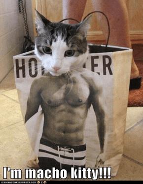 I'm macho kitty!!!