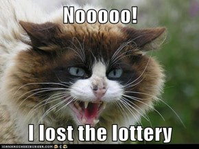 Nooooo!  I lost the lottery
