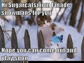 Hi Sugarcatsmom I made snowmans for you  Hope you can come out and play soon