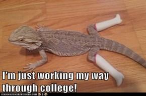 I'm just working my way through college!