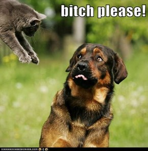 bitch please!