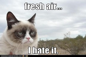 fresh air...  I hate it.