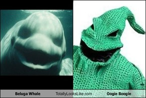 Beluga Whale Totally Looks Like Oogie Boogie